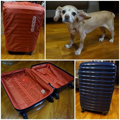 テレビショッピングで購入!アメリカンツーリスターのスーツケース
