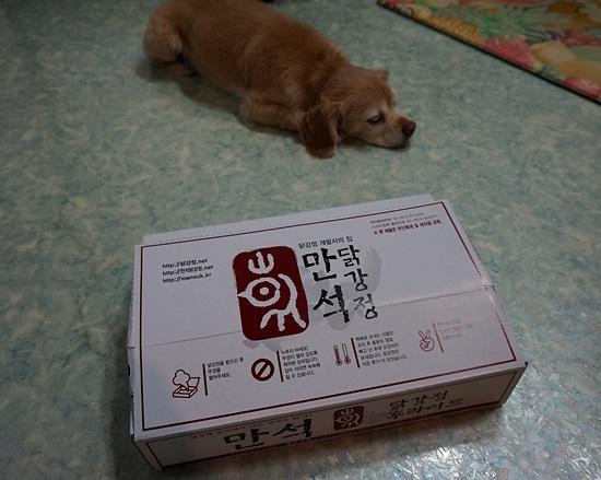 束草(ソクチョ)の名物!大人気のマンソクタッカンジョン!ロッテ百貨店で限定販売!